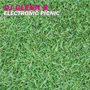 Electronic Picnic [Original Extended Mix]