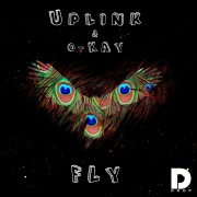 Fly (feat. Philip Strand)