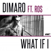 What If I (feat. Ros)