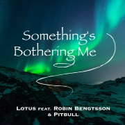 Something's Bothering Me (feat. Robin Bengtsson & Pitbull)