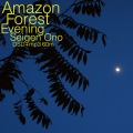 Amazon Forest Evening DSD60 (dsd+mp3)