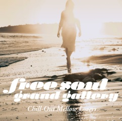 Free Soul Grand Gallery Chill-Out Mellow Lovers