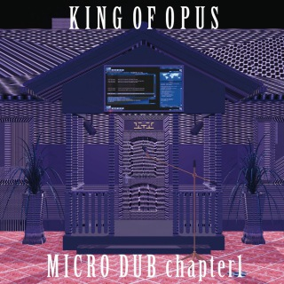 MICRO DUB chapter1