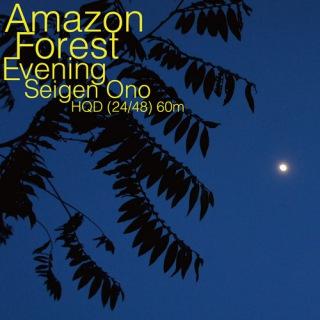 Amazon Forest Evening WAV60 (24bit/48kHz)