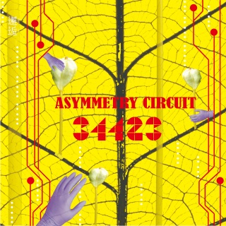 Asymmetry Circuit