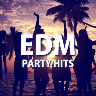 EDM Party Hits