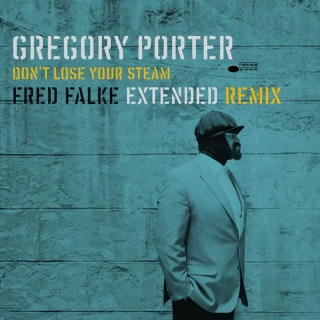 Don't Lose Your Steam (Fred Falke Extended Remix)