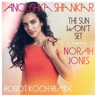 The Sun Won't Set (Robot Koch Remix)