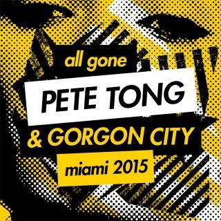 All Gone Pete Tong & Gorgon City Miami 2015