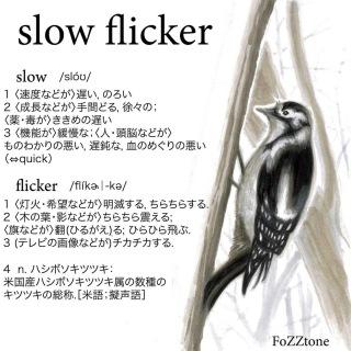 slow flicker(live ver.)