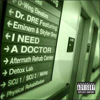 I Need A Doctor feat. Eminem, Skylar Grey