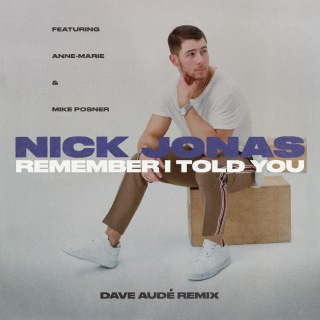 Remember I Told You (Dave Audé Remix)