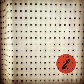 The Ants (Feeding Chain Pt.2)