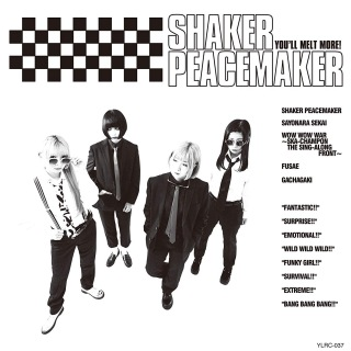SHAKER PEACEMAKER