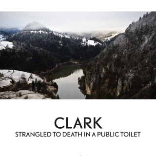 Strangled To Death In A Public Toilet