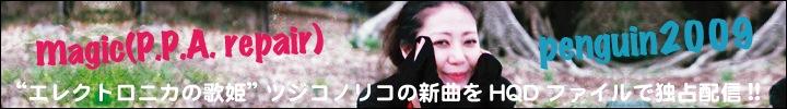 ツジコノリコ『penguin2009』&『magic(P.P.A. repair)』  インタビュー by 西澤裕郎
