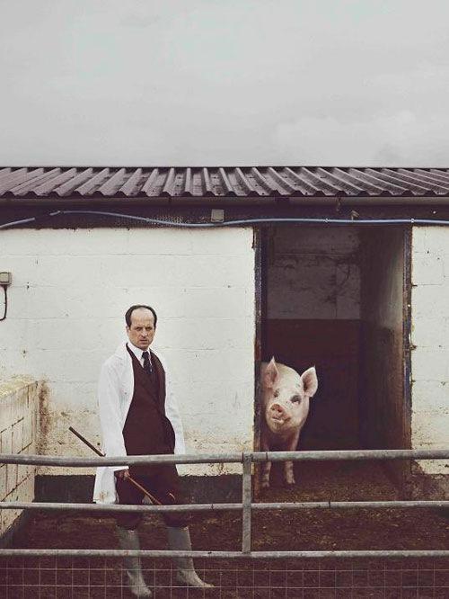 Matthew Herbert『One』三部作の最終章『ONE PIG』を配信開始!