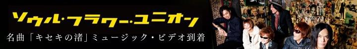ソウル・フラワー・ユニオン『キセキの渚』MVリリース