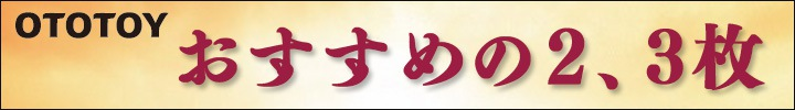 おすすめの2.3枚(2013/1/9~2013/1/16)