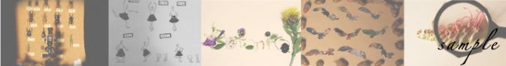 Babi、2ndアルバム『Botanical』フリー・ダウンロード&HQD配信!
