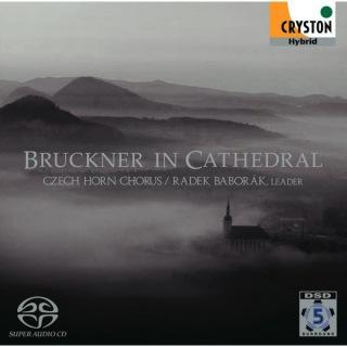 ブルックナー・イン・カテドラル — 天上の音楽 —