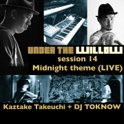 UNDER THE WILLOW session 14/ Midnight theme (LIVE)