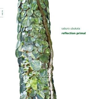 reflection primal