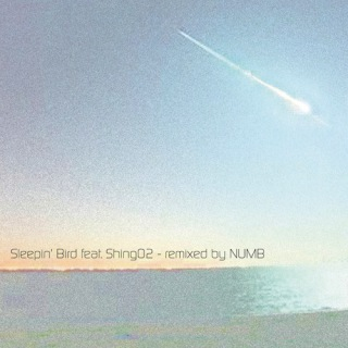 Sleepin' Bird feat. Shing02 - remixed by NUMB