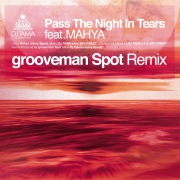 Pass The Night In Tears grooveman Spot Remix