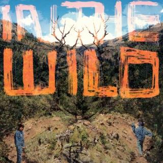 In The Wild(24bit/44.1kHz)