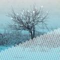 Winter Storm(24bit/48kHz)