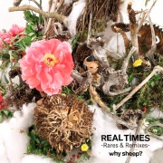 Real Times Rares&Remixes