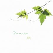 Piano voice