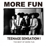 TEENAGE SENSATION! - THE BEST OF MORE FUN