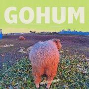 GOHUM(24bit/96kHz)
