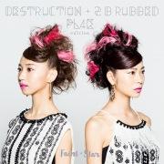 DESTRUCTION + 2 B rubbed PL4E edition
