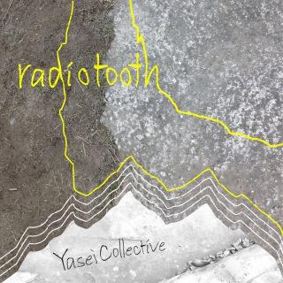 radiotooth