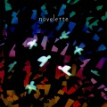 novelette