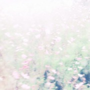 The fall rises(24bit/48kHz)