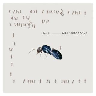月一交響曲 Op.2「MIKROKOSMOS(ミクロコスモス)」(DSD2.8MHz/1bit版)