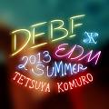 DEBF EDM 2013 SUMMER