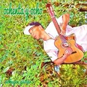 rokugen guitar