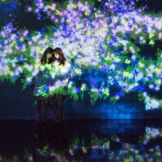 花と人、コントロールできないけれども、共に生きる - Kunisaki Peninsula (PCM 48kHz/24bit)