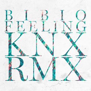 Feeling (Knx Remix)(24bit/44.1kHz)