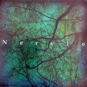 Nervio