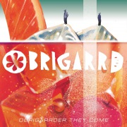 OBRIGARRDER THEY COME