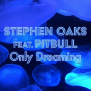 Only Dreaming (feat. Pitbull)