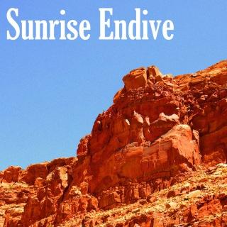 Sunrise Endive