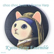 choo chooは韓国ドラマ・ハープが好き