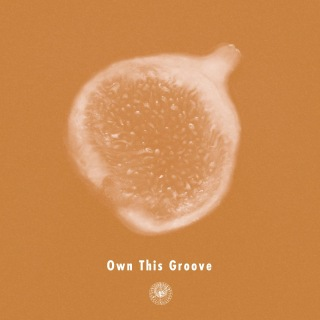 Own This Groove (feat. Liyv)